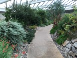 Inside the Biodome at the National Botanic Garden of Wales