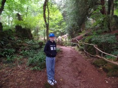 Tom enters Puzzlewood, filming location for Star Wars Episode VII The Force Awakens, planet of Tarkodana
