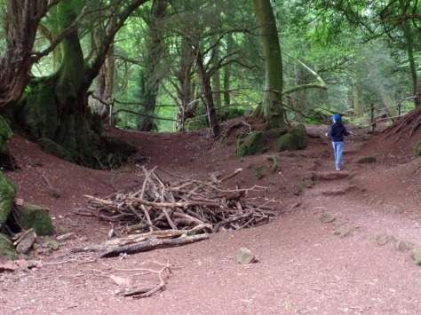 Aboard the Byzantium - Doctor Who filming location Puzzlewood
