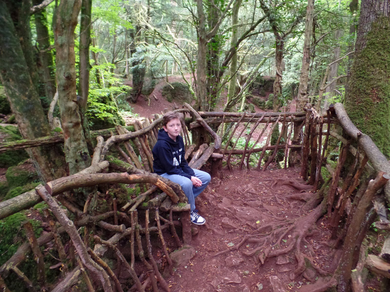 Tom rests on a rustic bench at Puzzlewood