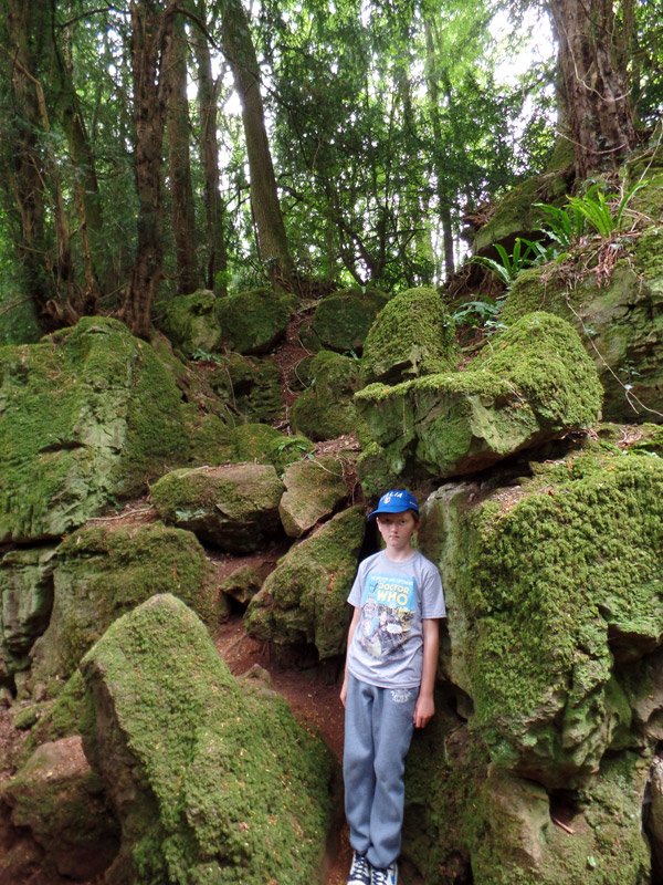 Looking for Middle Earth at Puzzlewood