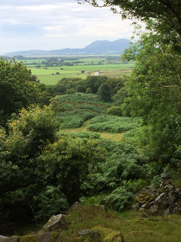 View from Folly Castle at Plas Brondanw