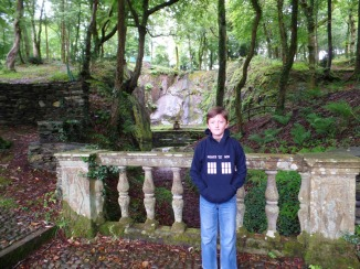 A magical forest at Plas Brondanw